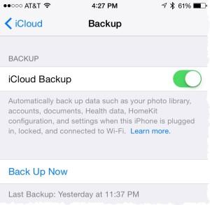 iCloud backup screen
